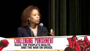 Challenging Punishment: Anatomy of a Drug War - Criminal Justice & Collateral Damages
